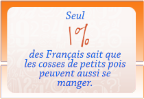 onglet_chiffre-cle_05